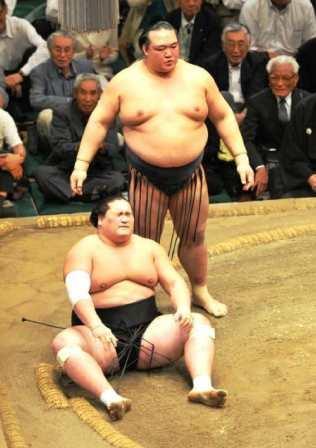 20151218 大相撲裏話 - 相撲・格闘技コラム _ 日刊スポーツ