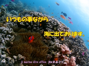 海洋中海外版