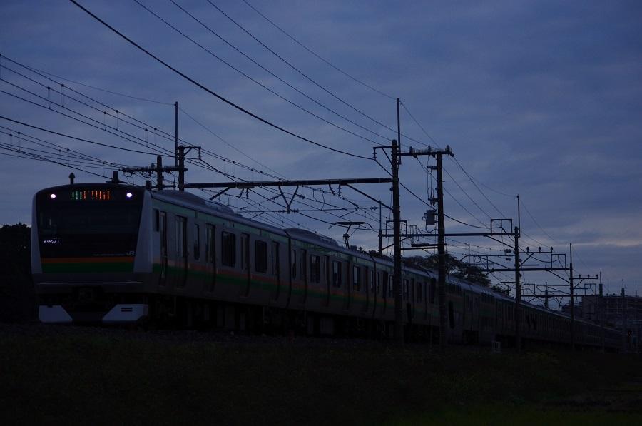 IMGP0079 (2)