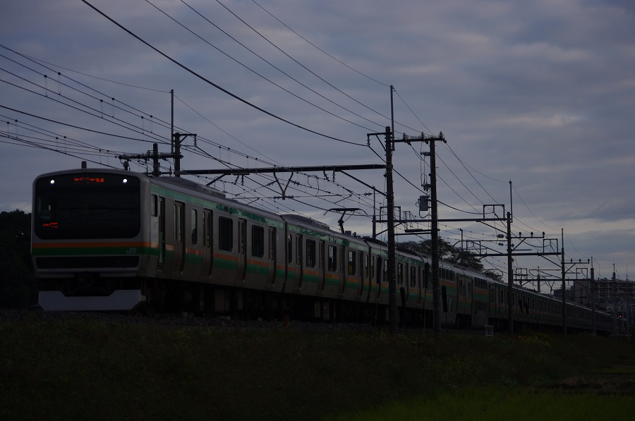IMGP0082 (3)