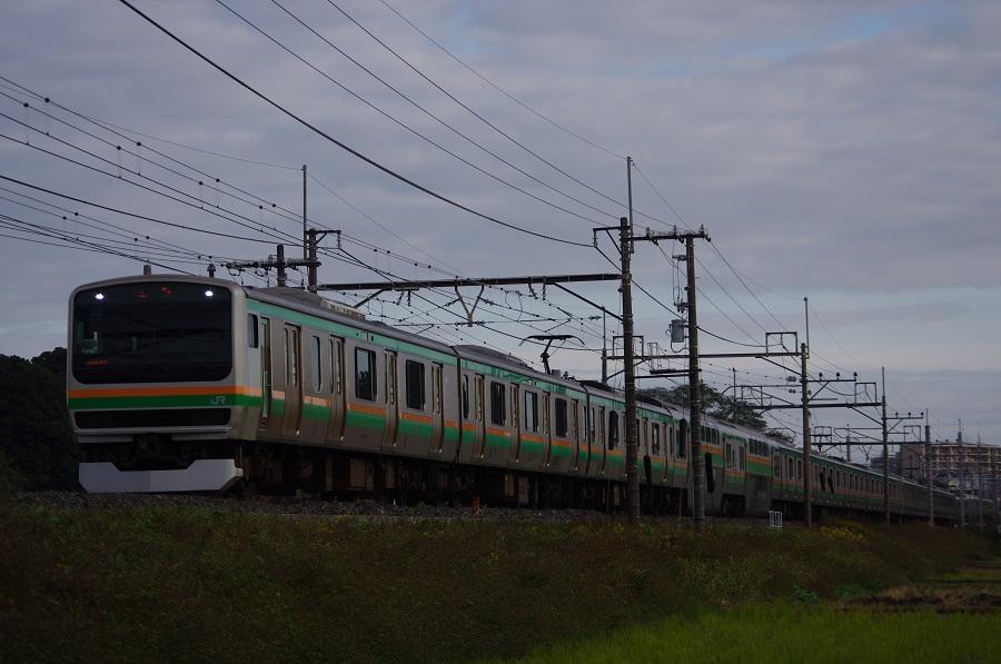 IMGP0091 (2)