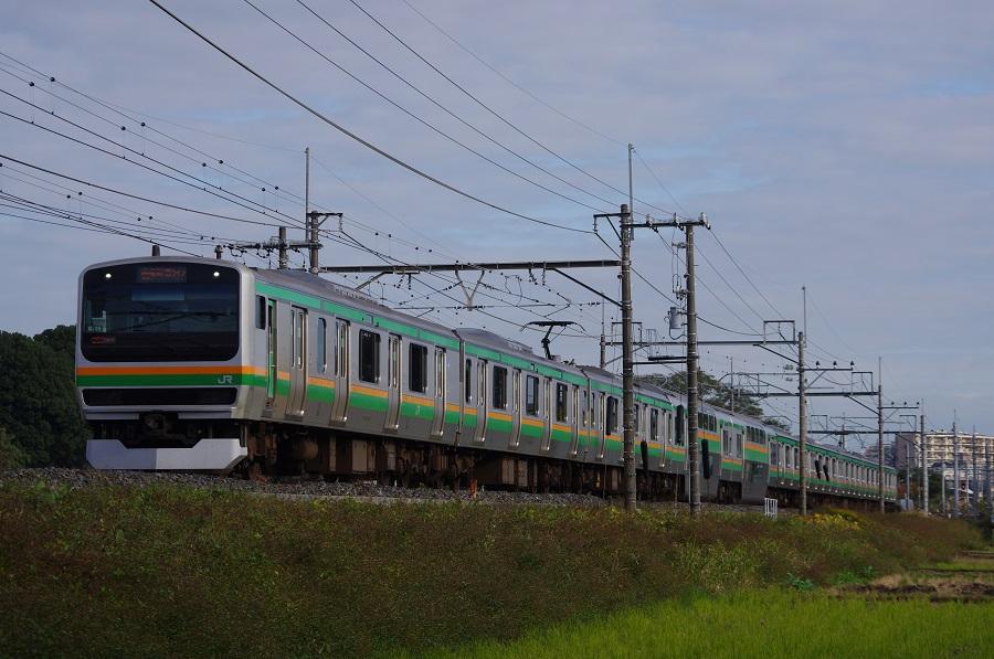 IMGP0099 (2)