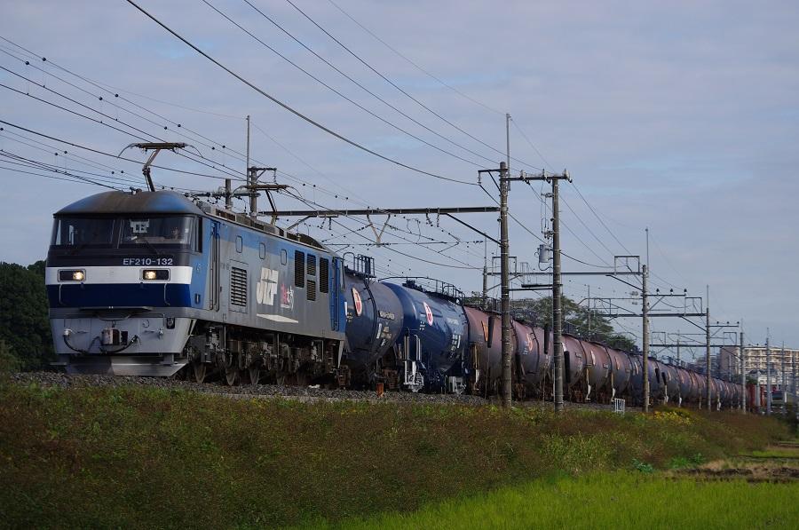 IMGP0101 (3)