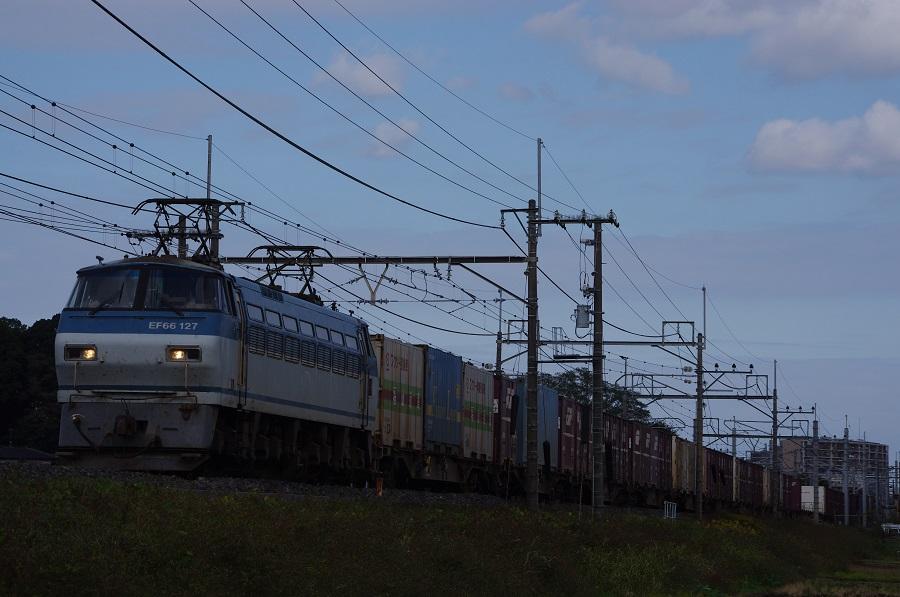IMGP0130 (3)
