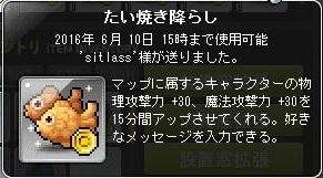 Maple160314_152445.jpg