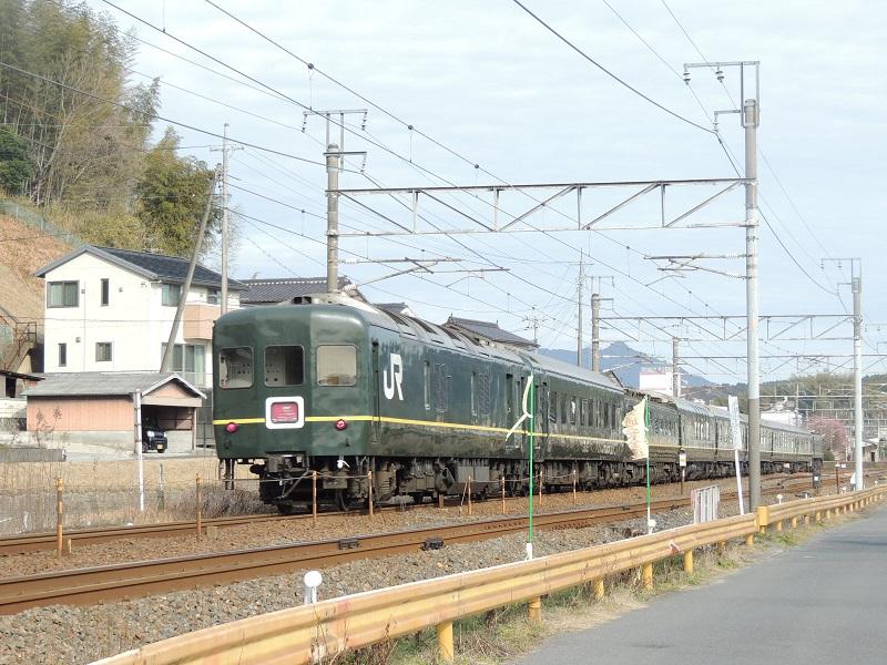 DSCN5702.jpg