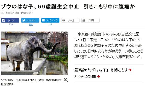 はな子news