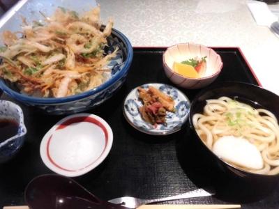 さくら茶屋 (6)