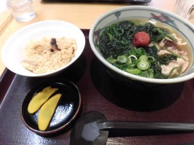 澤乃井 (11)