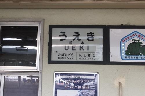 ueki (8)