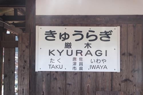 kyuuragi (11)
