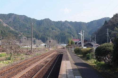 kyuuragi (15)