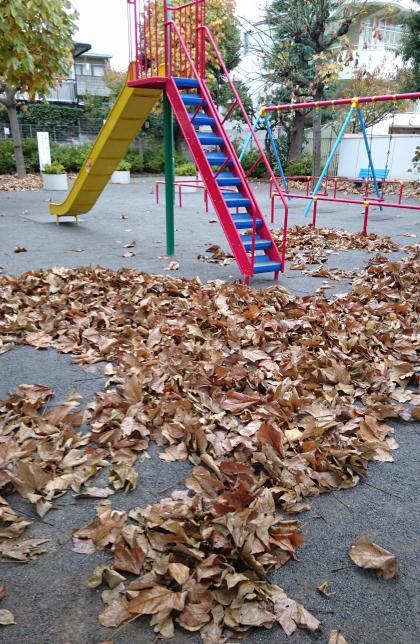 公園落葉_convert1