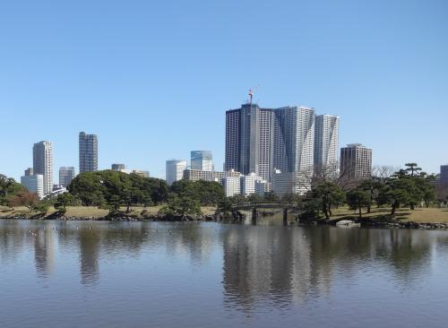 1603池からの風景_convert