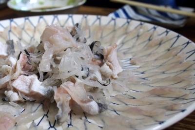 Daiyasu_1603-101.jpg