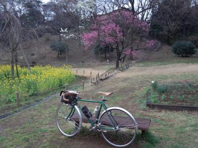 桜ランドナー
