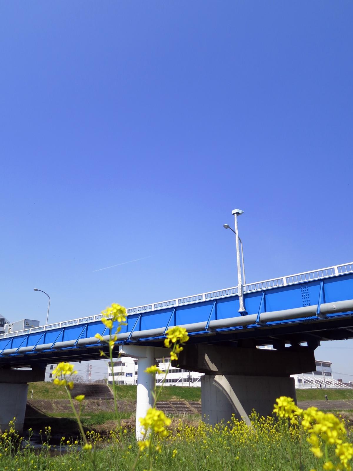 160329鶴見川-08