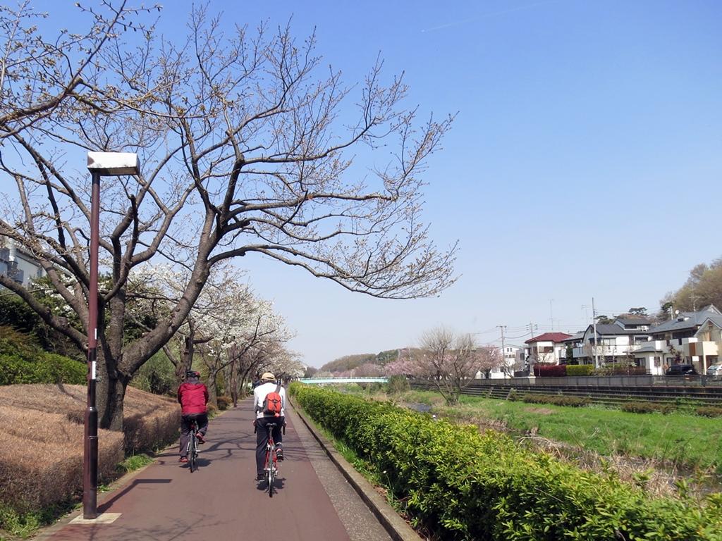 160331野川-09