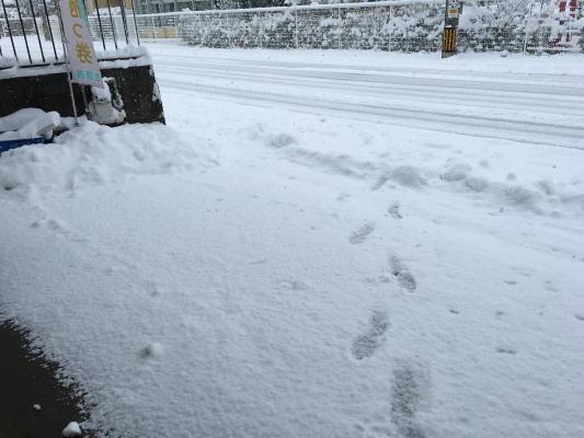 豪雪IMG_0002