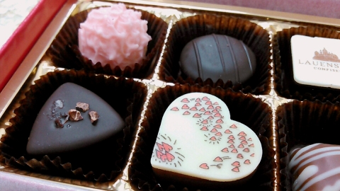 ローエンシュタインのチョコレート (10)