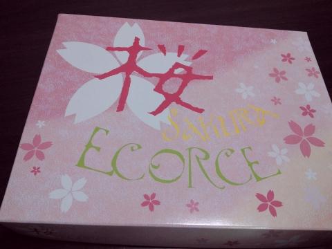 本高砂屋の桜エコルセ (2)
