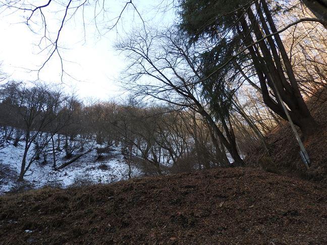 d 登山道北側斜面