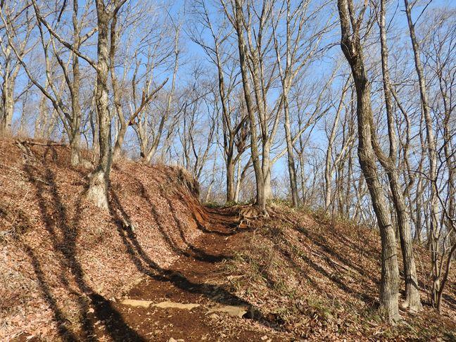 e 南側の登山道
