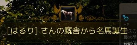 2016-02-27_51308070.jpg