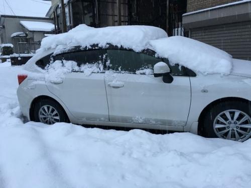 2015-12-29雪