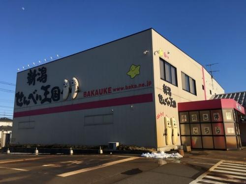 2016-02-18sennbaioukoku.jpg