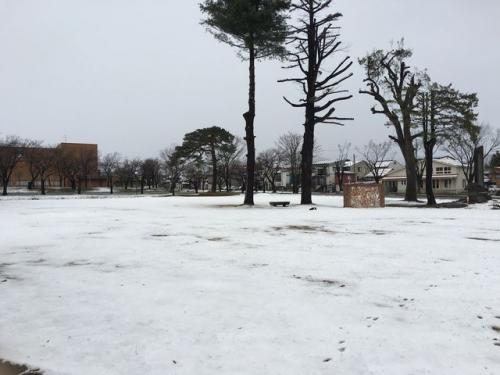 2016-03-25降雪