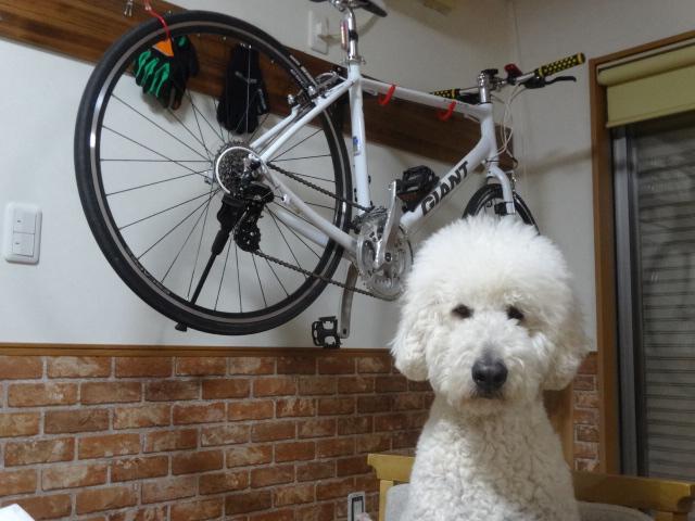 自転車 030