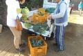 野菜を売る農家の人