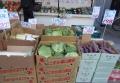 駅前の野菜販売所