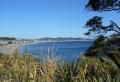丘から見る金田湾