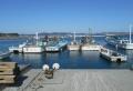 金田漁港②