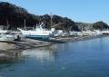 金田漁港④