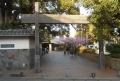 復元された冠木門