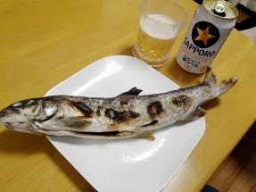 岩魚塩焼20160314
