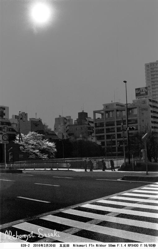 桜839-2-22 Ⅱ