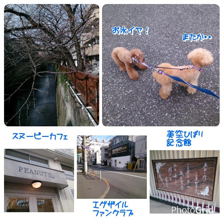 201512241936194a9.jpg