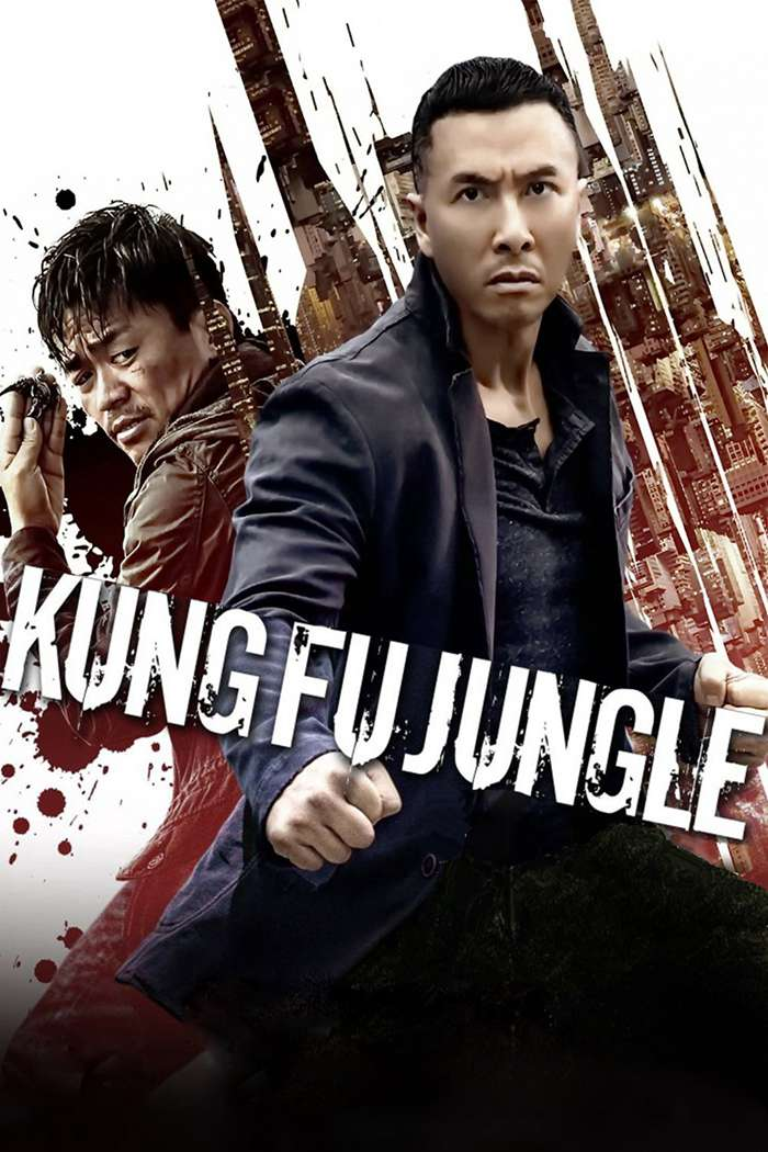 Kung-Fu-Jungle-2014.jpg