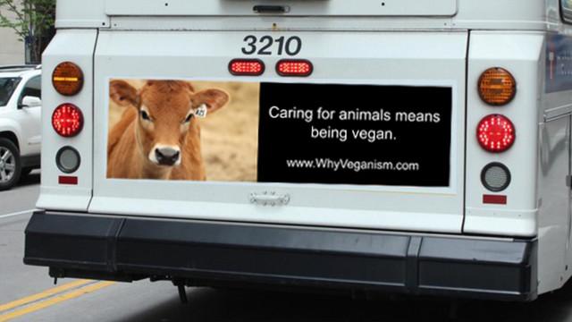 veganbus3.jpg