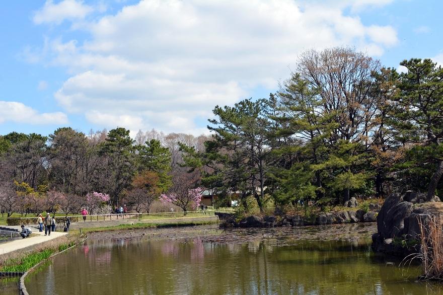 長居植物園・春 (1)