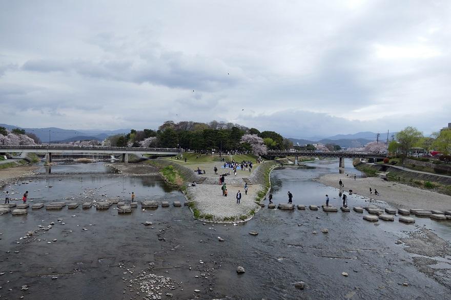 春の賀茂川公園 (1)
