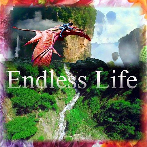endles-life-fly-0000726--.jpg