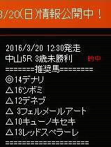 sw320_2.jpg