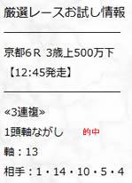 sy221.jpg