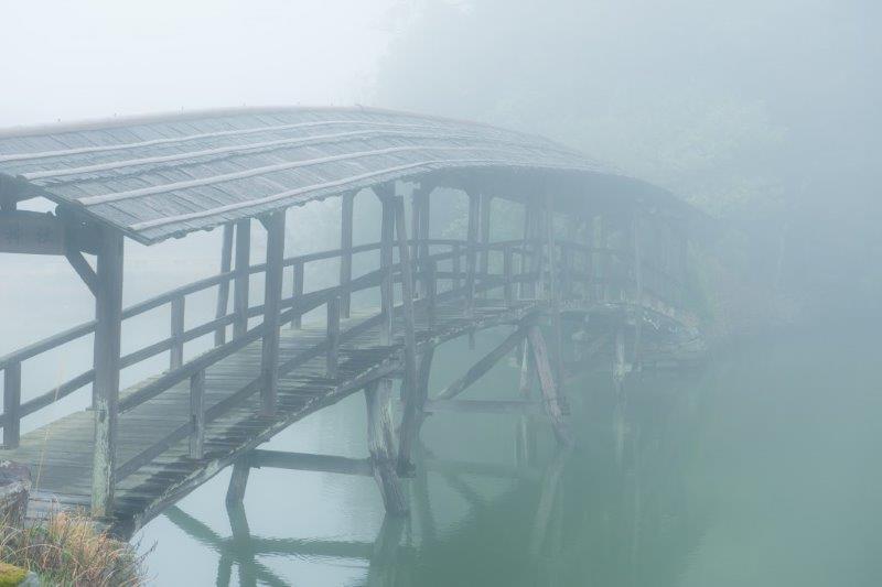 3月霧の石畳-1-1