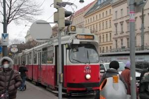 20130206 (12)